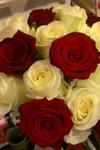 White and red rose bridal hand tied wedding flowers free local and surrounding areas delivery 33 bondgate darlington .