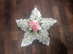 baby White star made from gypsophila fresh or artificial  floral teddy bear funeral tribute made lovingly by hand in our little shop with fresh flowers in 33 bondgate darlington local free delivery