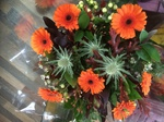 orange gerbera and thistle  bouquet hand tied  fresh flowers made by our florists in our family run business free local delivery and surrounding areas in darlington